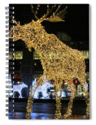 Gold And Silver Spiral Notebook
