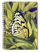 Gold Butterfly In Branson Spiral Notebook