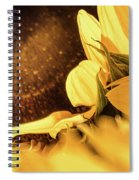 Gold Dust 2 - Spiral Notebook