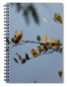 Gold Floats Spiral Notebook