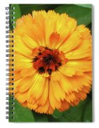 Gold Flower Spiral Notebook
