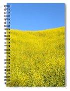 Gold Hills Spiral Notebook