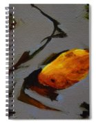 Gold In The Pond Spiral Notebook