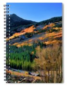 Gold In The Rockies Spiral Notebook