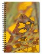 Gold Leaf 3 Spiral Notebook