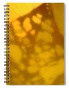 Gold Leaf 5 Spiral Notebook