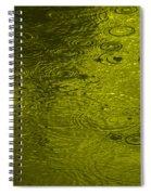 Gold Rain Droplets Spiral Notebook