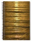 Gold Sea Spiral Notebook