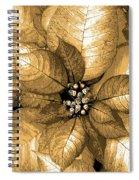 Gold Shimmer Spiral Notebook