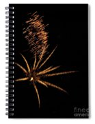 Gold Star Tail Spiral Notebook