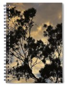 Gold Sunset Tree Silhouette I Spiral Notebook