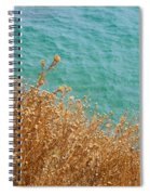 Gold Thistles And The Aegean Sea Spiral Notebook
