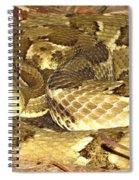 Gold Viper Spiral Notebook