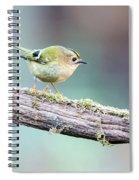 Goldcrest Spiral Notebook