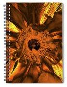 Golden Anemone Spiral Notebook