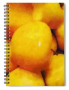 Golden Apples Of The Sun Spiral Notebook