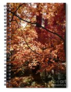 Golden Autumn Sunshine Spiral Notebook