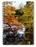 Golden Autumn Trees Spiral Notebook