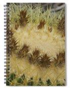 Golden Barrel Cactus Spiral Notebook