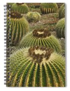 Golden Barrel Spiral Notebook