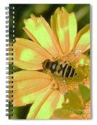 Golden Bee Spiral Notebook
