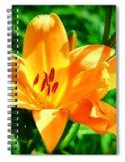 Golden Blossom Spiral Notebook