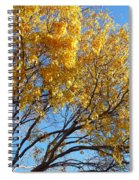 Golden Boughs Spiral Notebook