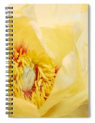 Golden Bowl Tree Peony Bloom Spiral Notebook