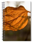 Golden Briar Leaf Spiral Notebook