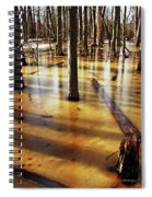 Golden Brown Frozen Pond Spiral Notebook