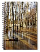 Golden Brown Pond Spiral Notebook