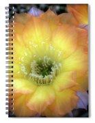 Golden Cactus Bloom Spiral Notebook