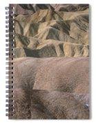 Golden Canyon - Death Valley National Park Spiral Notebook