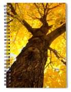 Golden Climb Spiral Notebook