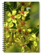 Golden Currant Blossoms Spiral Notebook