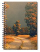 Golden Days Spiral Notebook