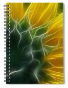 Golden Delight Spiral Notebook