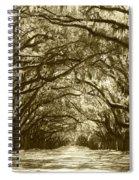 Golden Dream World Spiral Notebook