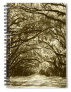 Golden Dream World Spiral Notebook