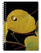 Golden Drop Spiral Notebook