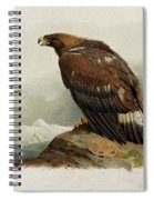 Golden Eagle By Thorburn Spiral Notebook