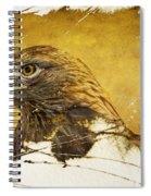 Golden Eagle Grunge Portrait Spiral Notebook