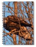 Golden Eagle Liftoff Spiral Notebook