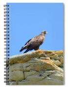Golden Eagle Lookout Spiral Notebook