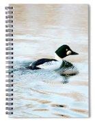 Golden Eye Reflection Spiral Notebook
