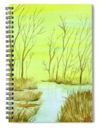 Golden Fall Day  Spiral Notebook