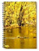 Golden Fall  Spiral Notebook