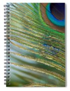 Golden Feather Spiral Notebook