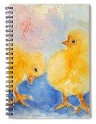 Golden Fluff Spiral Notebook