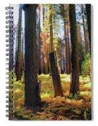 Golden Forest Bed Spiral Notebook